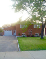 RENOVATED AND COZY 3+1 BDRM RAISED RANCH ..GORGEOUS!
