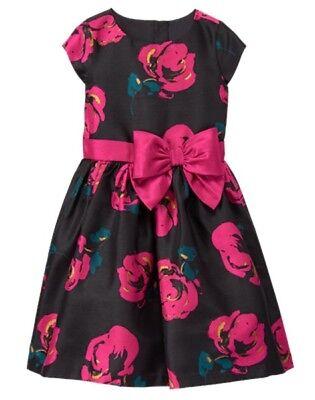 NWT Gymboree Fun and Fancy Pink Rose Dress Christmas Girls 4,5,6,7,10