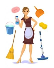 House keeper, house cleaning, pet care