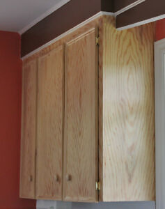 Kitchen Cabinet Facelift