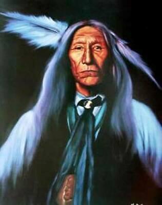 Wolf Robe (Indianer Poster Wolf Robe)