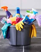 House cleaning plus more!!! servicing Stratford and Area