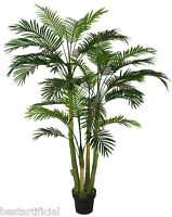 Best Artificial 150cm 1,5 M Paradise Palma Tropicale Pianta Ufficio Veranda -  - ebay.it