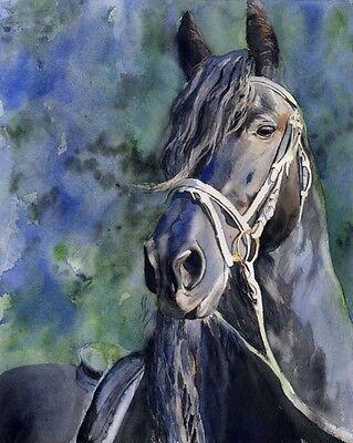 Giclee PRINT Friesian Black Horse Fresian Painting Art watercolor gift custom