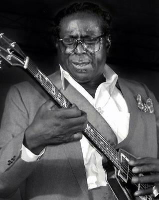 ALBERT KING Blues Guitar B&W Glossy 8 x 10 Photo Poster Print