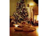 Real xmas trees - The highest quality fresh cut trees (free delivery Edinburgh & central scotland)