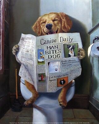FUNNY DOG POSTER puppy dog reading newspaper on toilet humor 8x10 art print