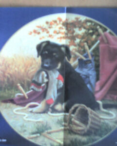 NEW PRICES  collector plates  NEW   love animals Gatineau Ottawa / Gatineau Area image 3