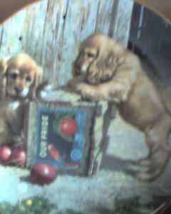 NEW PRICES  collector plates  NEW   love animals Gatineau Ottawa / Gatineau Area image 4