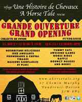 A Horse Tale Grand Opening Fundraiser