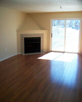 Pet Friendly - Wood Fireplace & Dishwasher - 1 + 2 Bedrooms