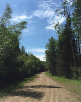 Christopher Lake Acreage- 40 acres