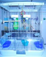 Vision White bird cage L15``x W11``x H20`` $30.00