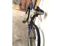 Mountain ridge bike