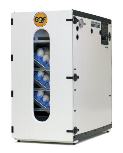 GQF 1202E Professional Cabinet Incubator Best Hatching Quail Chicken Duck Eggs