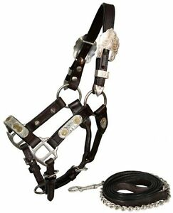 Miniature Horse Mini Western Silver Show Halter Dark Leather London Ontario image 3
