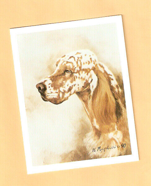 English Setter Note Cards NoteCard by Ruth Maystead Box of 6