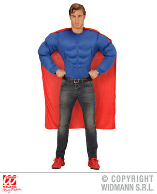 Mens Male Adult Super Hero Fancy Dress Costume Outfit Adult ()