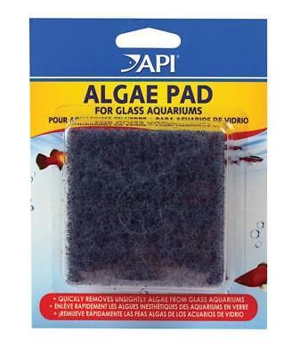 Hand Held Algae Scraper Pad for Glass/Hard Plastic Surfaces (3x3 in) 2 pack