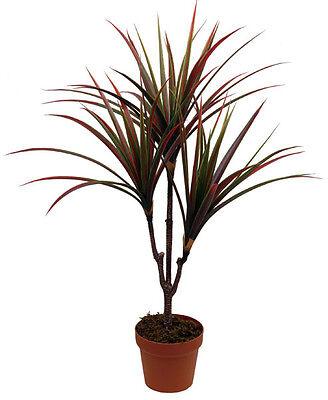 Best Artificial 3ft 90cm Red Dracaena Tree Plant Tropical House Garden Palm