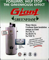 50 Gal Giant Water heater
