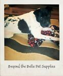 Beyond the Bells; Pet Supplies