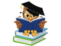 Primary 1:1 tutor (over 3 years experience in primary education)