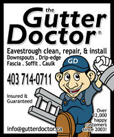 THE GUTTER DOCTOR!