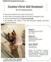 Canine First Aid Course In Garson