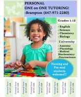 Grades 1-12 + University subjects - Tutoring at home!!!