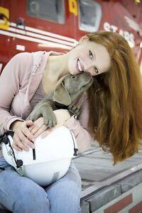 Starstruck Labradors - Quality Health Tested Labrador Puppies!