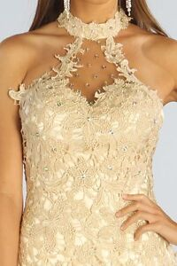 Lace Evening Dress with some sequin detail