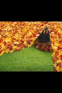 FALL YARD CLEAN-UP.   AND LAWN CARE! Peterborough Peterborough Area image 2