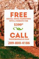 Monthly Digital Marketing - Grab More Attention