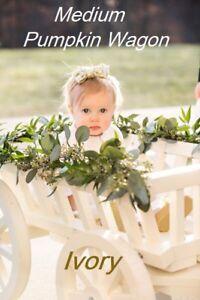 Flower girl wedding wagon