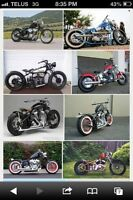 V-twin project wanted