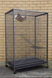Bird Parrot Cage Aviary Ferret Cat Budgie Hamster House W Castor Oakleigh Monash Area Preview