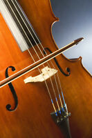 Violin, Viola, Cello, Double Bass group lessons + orchestra