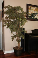 6 Feet tall Artificial Maple Tree