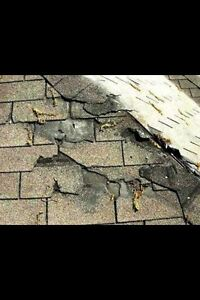 ROOF REPAIRS/ FAIR PRICES!!! References available Peterborough Peterborough Area image 1
