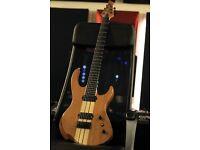 Agile Intrepid 730 7 String Guitar with Bareknuckle Aftermath Set PIckups