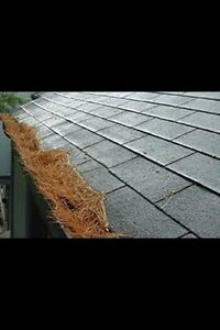 GUTTER CLEANING! FAIR PRICES!! Contact me today! Peterborough Peterborough Area image 2
