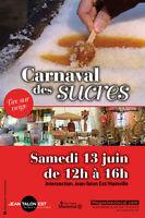 Bénévoles pour le Carnaval des Sucres