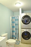 Kenmore Washer & Gas Dryer (also Fridge, Stove)