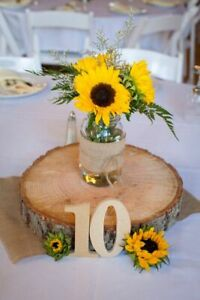 Rustic Wood Centrepieces / Tree Slices / Wood Coasters / Rounds