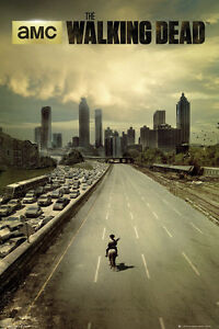 The Walking Dead - City - TV Poster #D - New Licensed