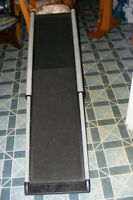 ramp track  pour chien