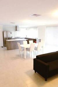 PRICE DROP! F/Furnished NEW Modern Rooms near Curtin/City/Airport Bentley Canning Area Preview