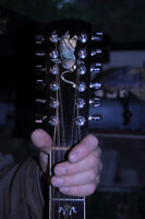 Larrivee 12 string.made in Victoria era.