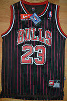 NEW w tags Michael Jordan All Embroidered Stripe Jersey